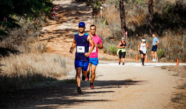 do runners need more salt