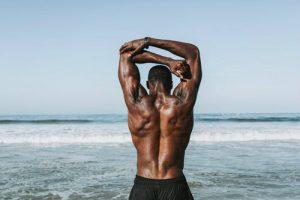 leucine muscle building